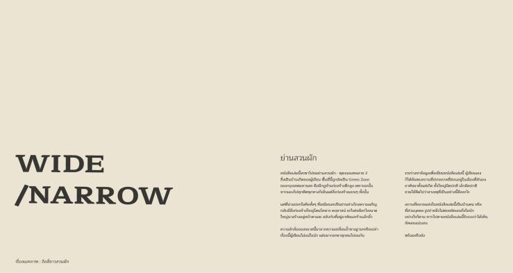 Wide and Narrow Presentation-11